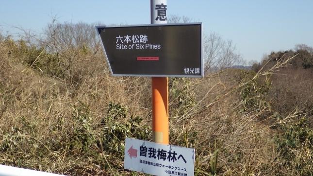 ⑥047曽我丘陵170204
