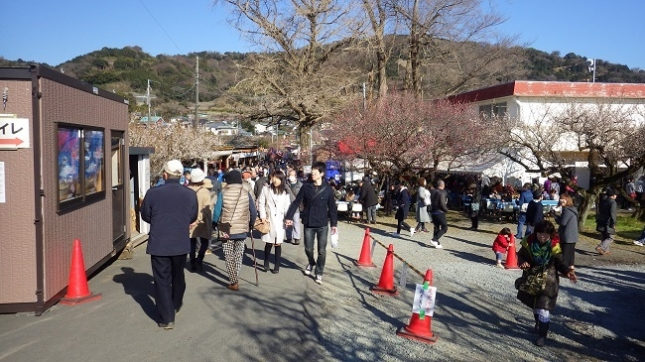 ⑥218小田原梅祭り170204