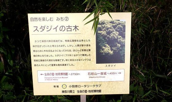 172入生田駅まで3050m