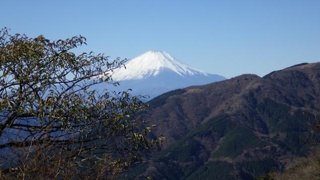 ⑧177大山登山道20丁目富士見台