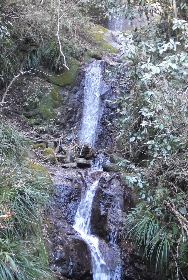 28-193山ゆりの滝