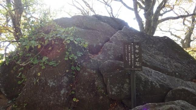 27セキレイ石